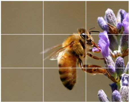 Example of customized photographs of use the rule of thirds