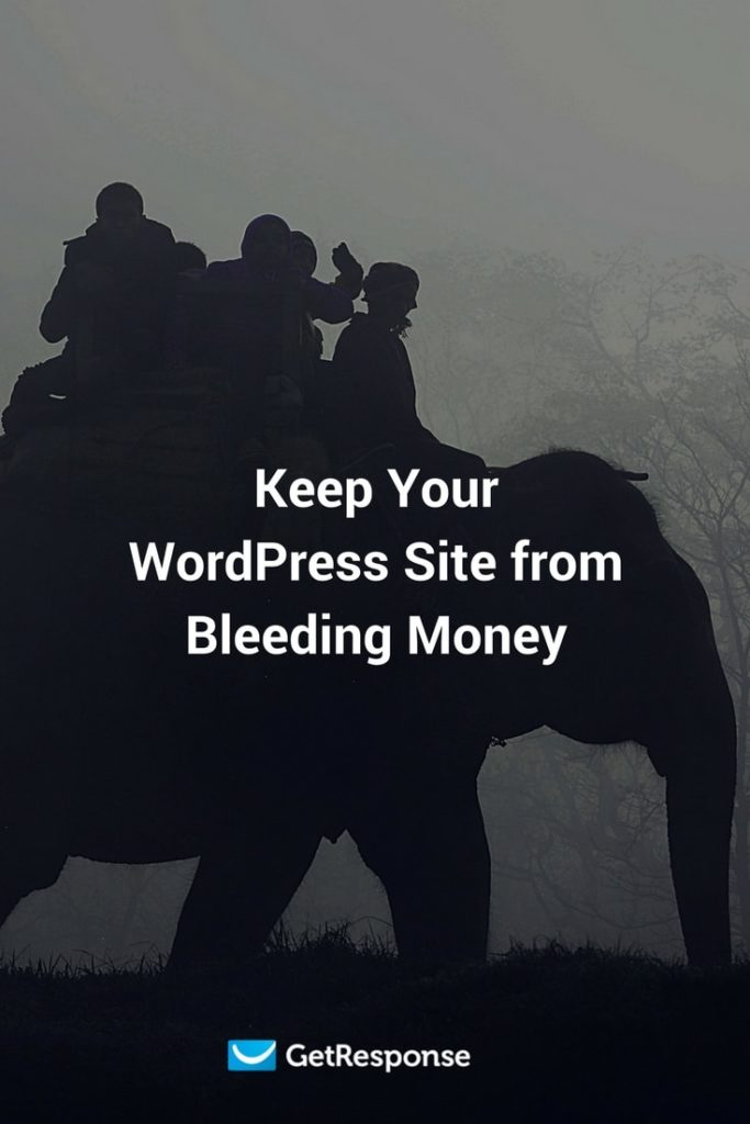 Keep Your WordPress Site from Bleeding Money