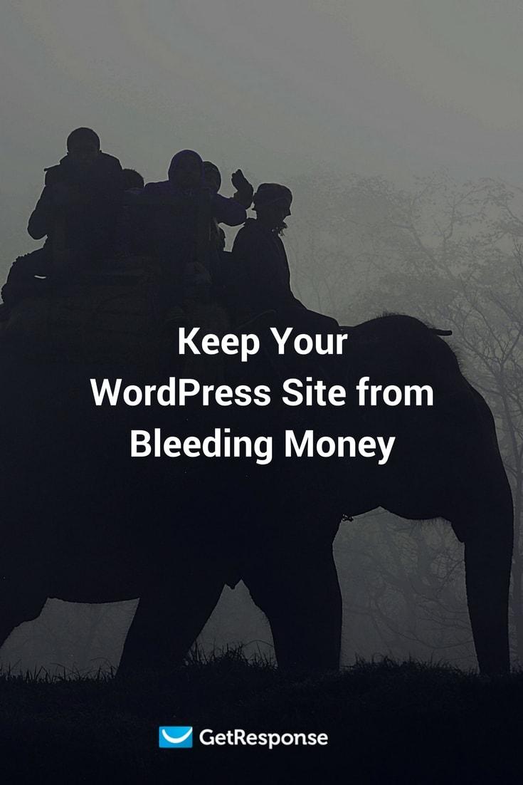 Keep Your WordPress Site from Bleeding Money