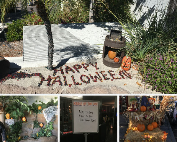 Halloween decorations we stumbled upon in San Diego, CA