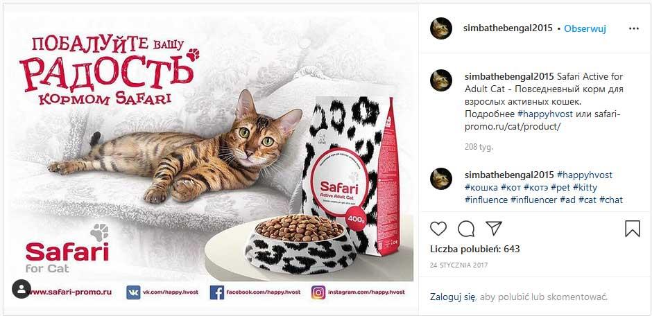 кот Симба отдыхающий на белом диване с рекламой кошачьего корма Safari