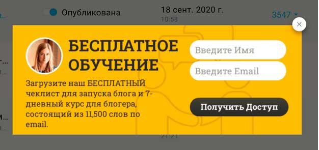 Форма желтого цвета с двумя белыми полями и одним серым для заполнения и получения бесплатного чек-листа для заработка на блоге