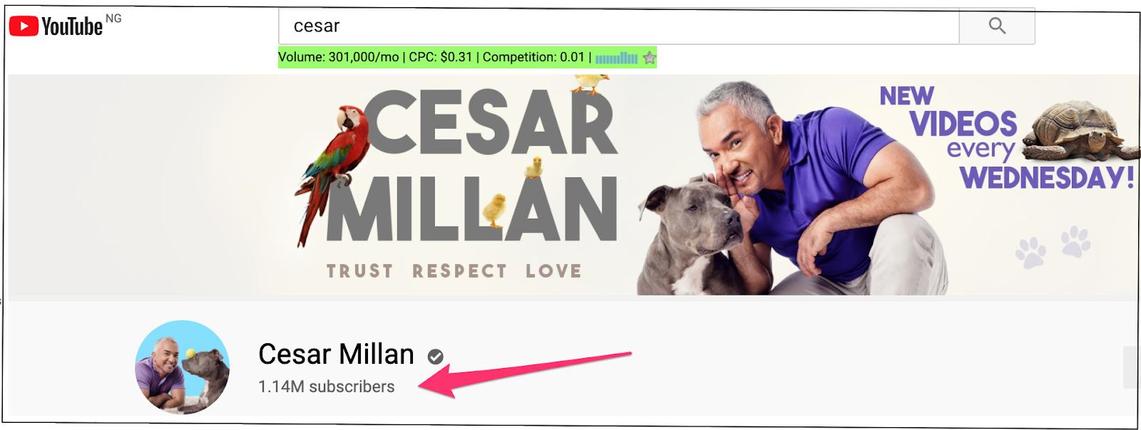 Képernyőkép Cesar Millan YouTube-követőinek számáról (1,14 millió előfizető).