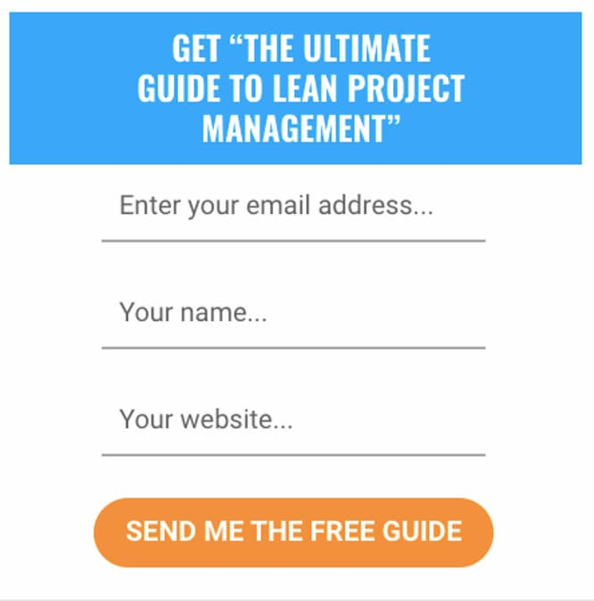 Lead magnet signup form with a website field.