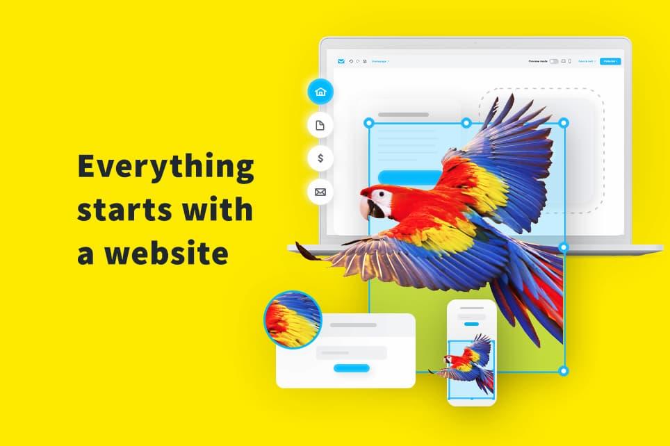 ноутбук и летящий попугай на желтом фоне