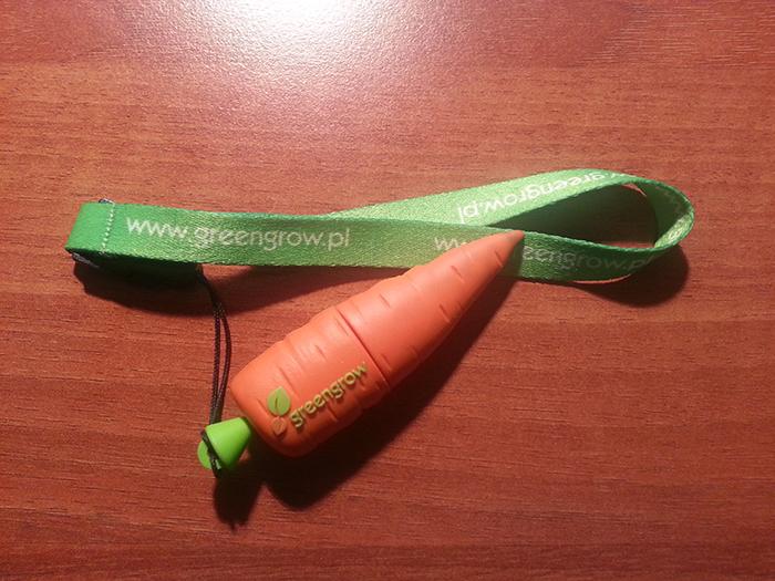 Pamiec USB Greengrow