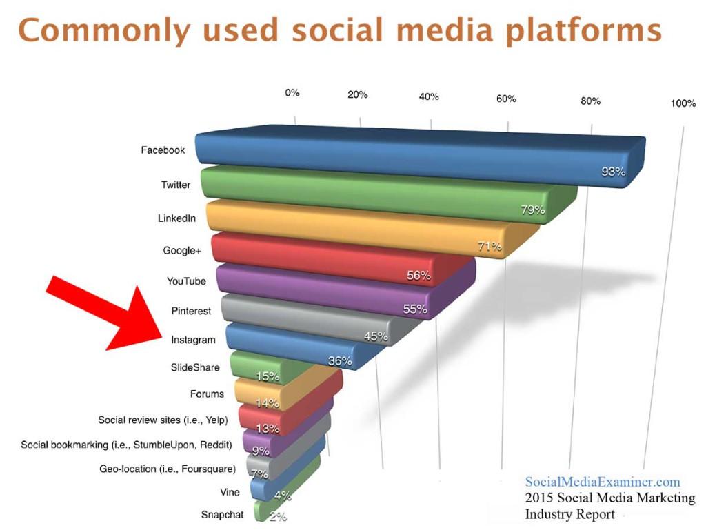 CommonlyUsedSocialMediaPlatforms2015-1024x769