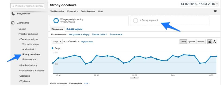 Zdj.1. Informacje dotyczące ruchu na stronach docelowych oraz możliwość dodawania segmentów w panelu Google Analytics