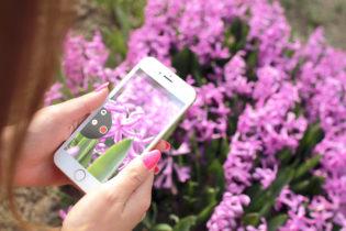 Jak wykorzystać pozytywną energię Instagrama w email marketingu