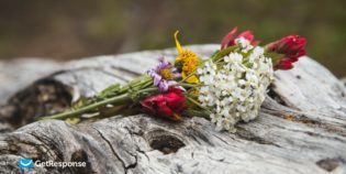 Открываемость и кликабельность — как флористы улучшают эффективность рассылки перед Днем Влюбленных