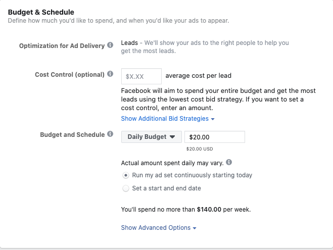 Facebook Lead Ads Budget and Schedule.