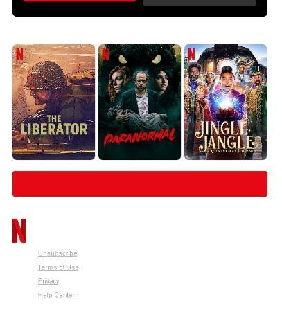 пример футера от Netflix