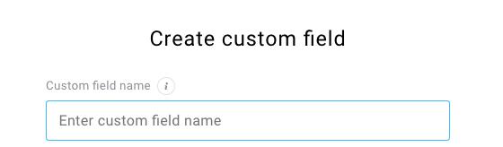 field for entering custom field name shown