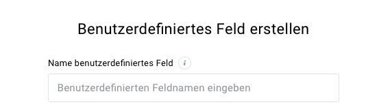 Feld für benutzerdefinierten Feldnamen.