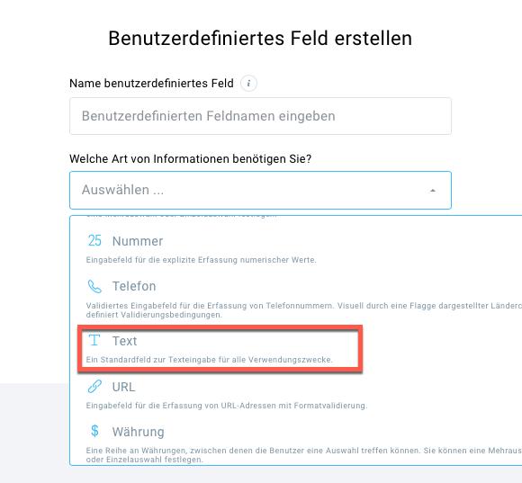 Auswahl Feldformat für benutzerdefiniertes Feld.