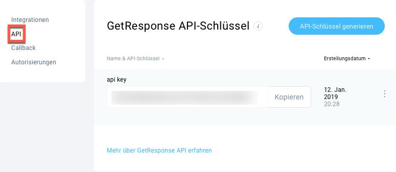 API-Schlüssel wird angezeigt.