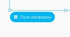 поля вебформы
