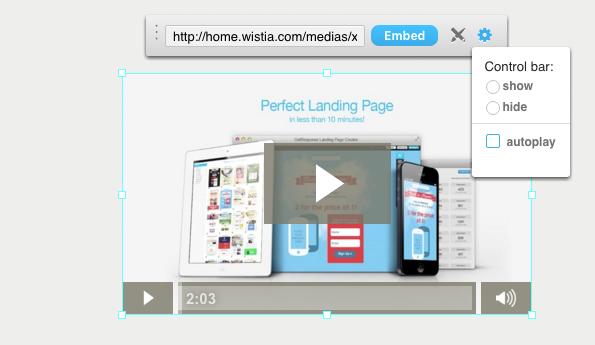 Landing Page Wistia Video einfügen.