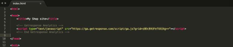 Pegar el código en el HTML de la pagina