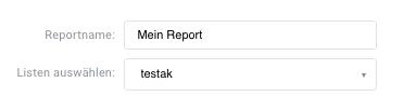 Eingabefeld für Reportnamen und Listenauswahl.