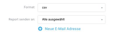 Auswahl Reportformat und Empfänger.
