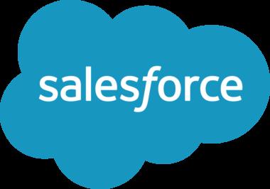 Salesforce data synchronization