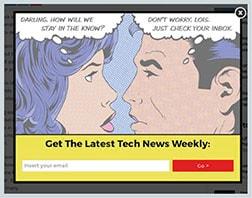 Rys. 3 - Formularz na stronie wyjścia – The Next Web